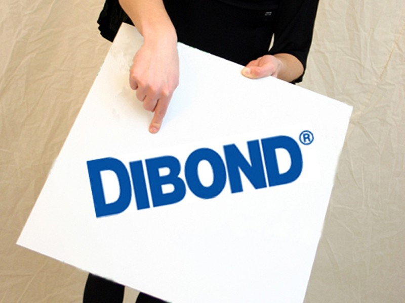 https://www.manfred-jung.com/search?sSearch=dibond