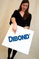 DIBOND® 1000 x 2050 x mm Aluminiumverbundmaterial