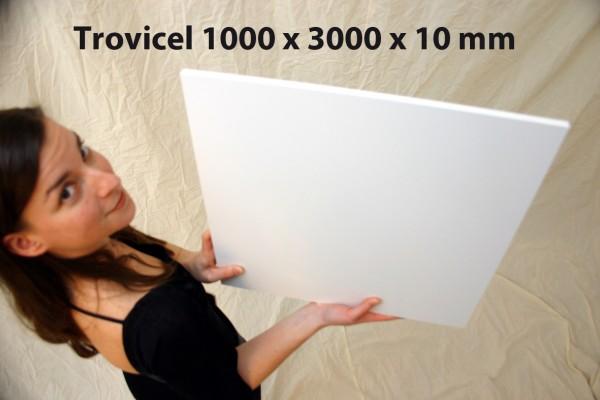 Trovicel 1000 x 3000 x 10 PVC-Integralschaumplatte